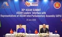 """越南加入东盟25周年:越南是践行东盟理想和价值观的""""榜样"""""""