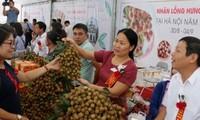 兴安省多举措促进农产品销售