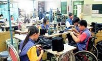 越南致力于改善残疾人的生活质量