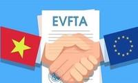 指导有关机关落实EVFTA协定