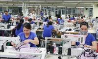 国际媒体评估EVFTA给越南带来的机遇