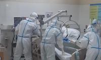 越南累计新冠肺炎死亡病例32例