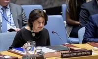 联合国安理会召开会议 落实青年、和平与安全决议