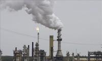联合国秘书长呼吁世界强国合作应对气候变化