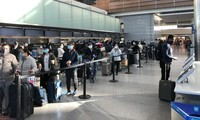 将在韩国和日本的近600名越南公民接回国