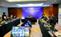 越南为联合国安理会的共同使命作出积极和负责任贡献