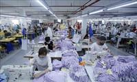 越南产品在世界纺织服装市场占据一席之地