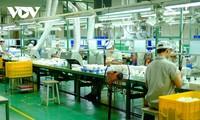 仅有4%的越南出口产品利用了《全面且先进跨太平洋伙伴关系协定》的优惠关税