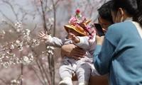 中国允许一对夫妻生育三个子女