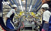 越南经济规模年底有望达到5000亿美元