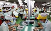 Vietnam's export surplus reaches 200 million USD in January