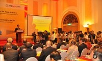 Dong Thap tops Vietnam's 2012 competitiveness index
