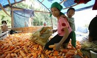 Vietnam continues to prioritize social welfare and poverty reduction