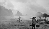 Vietnamese life in the 1990s