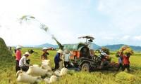 Corporate involvement in new rural development
