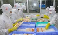 Vietnam–Brazil trade turnover surpasses 3 billion USD