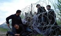 EU faces refugee challenge
