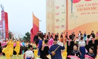 National unity week honors Vietnam's culture