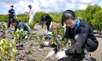 EU supports Vietnam to cope with climate change