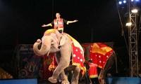 200 performers to compete in Vietnam-Laos-Cambodia circus contest