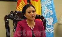 Vietnam faces opportunities, challenges in UN program realization
