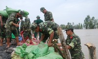 Vietnam participates in ASEAN's training course on natural disaster rescue