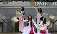 Vietnam leaves good impression at Czech folk culture festival