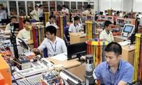 Vietnamese processing industry lures ASEAN investors