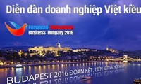 The Federation of Overseas Vietnamese Business Associations in Europe marks its 10th anniversary
