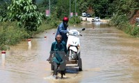 Vietnam responds to International Day for Disaster Reduction
