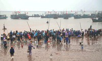 Giao Hai fish market, another attraction of Nam Dinh province