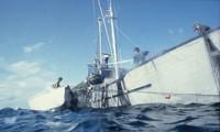EU protects ocean ecologies