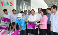 Soc Trang province to develop high-yield rice breeds and fruits