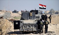 Iraqi army kills 75 ISIS militants, liberates many parts of West Anbar