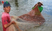 National action program to develop shrimp industry launched
