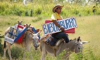 A library on a burro's back