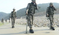 Two Koreas begin to remove landmines in demilitarized zone