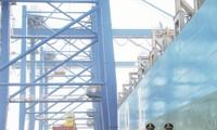 Ba Ria –Vung Tau integrates maritime sovereignty protection in economic development