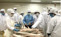VN's efforts to fight IUU fishing praised