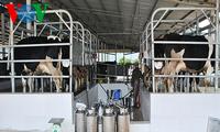 High-tech agriculture development in Son La