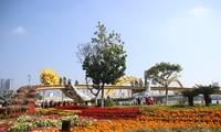 """Spring Flower festival """"Golden Pig Knocking the Door"""" opens in Da Nang"""
