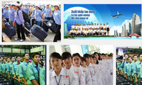 Countries keen to recruit Vietnamese workers