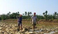 Cong Luong village, where men do farm work, women stay home