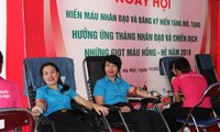 2019 Humanitarian Month widely implemented in Vietnam