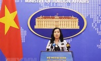 Vietnam values comprehensive partnership with US: spokesperson