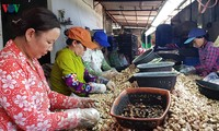 Changes recognized in Phuoc Cat, Lam Dong province
