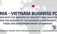 Vietnam-Romania's joint committee on economic cooperation convenes in Bucharest
