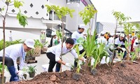 Japanese AEO group contributes to build green and clean Hanoi