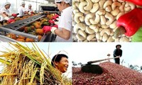 Vietnamese farmers: Opportunities and challenges in global integration