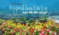 Festival makes Da Lat flower city shine
